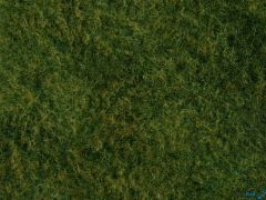 Wildgras-Foliage hellgrün 20 x 23 cm