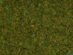 Streugras Wiese 1.5 mm 20 Gramm