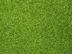 Streumaterial hellgrün 42 Gramm