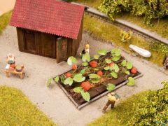 Kürbis 3x6cm 8 Pflanzen