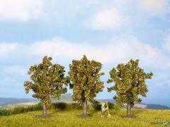 Apfelbäume 8 cm hoch 3 Stück