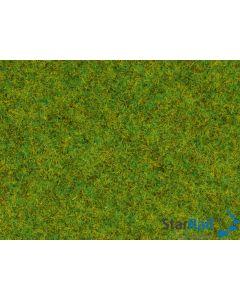 Streugras Frühlingswiese 1.5 mm 20 Gramm