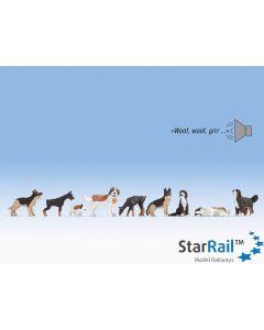 Sound-Szene Hunde